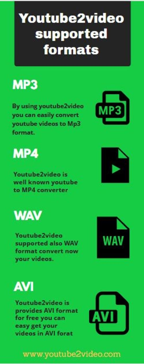 How many Types of Formats Youtube2video supports via Youtube2video